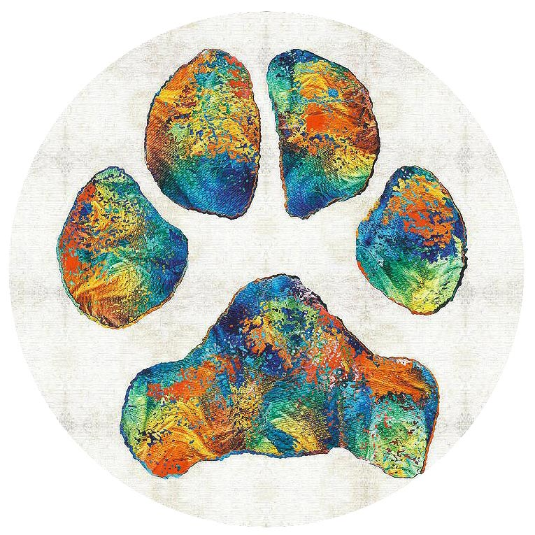 Snap Jewelry Enamel Ceramic - Paw Print