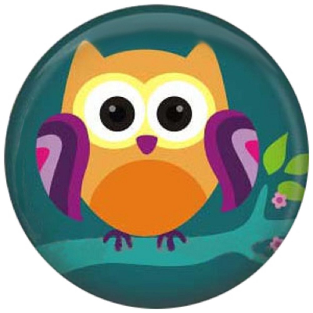 Snap Jewelry Enamel Ceramic - Night Owl