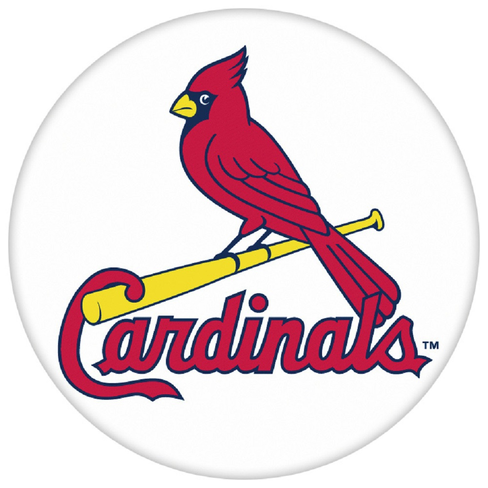 Snap Jewelry Enamel Ceramic - Sports Team Baseball Cardinals