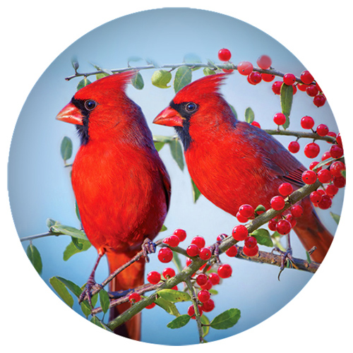 Snap Jewelry Enamel Ceramic Bird Red Cardinal