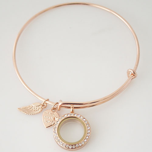 Alex & Ani inspired Memory Locket - Rose Gold 20mm Stainless