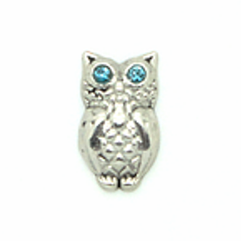 Memory Locket Charms Owl, Sliver and Blue Stones