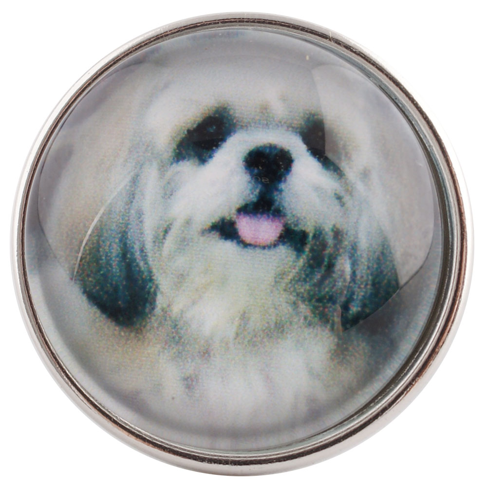 Snap Glass Jewelry - Animals Dogs