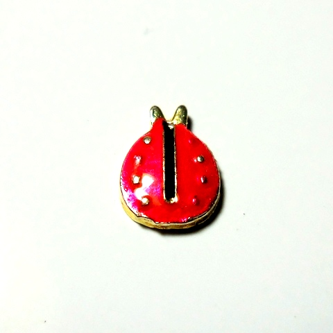 Memory Locket Charms Lady Bug Red