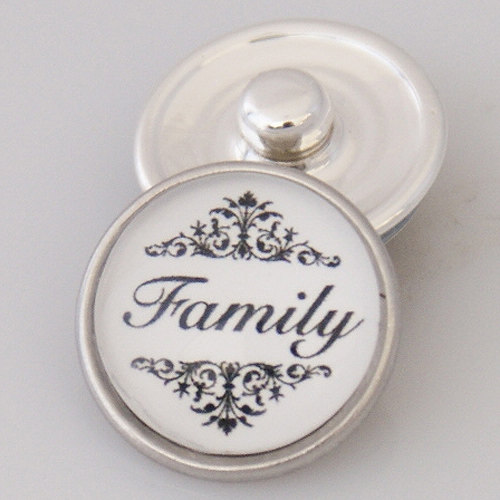 Snap Jewelry Glass - Family