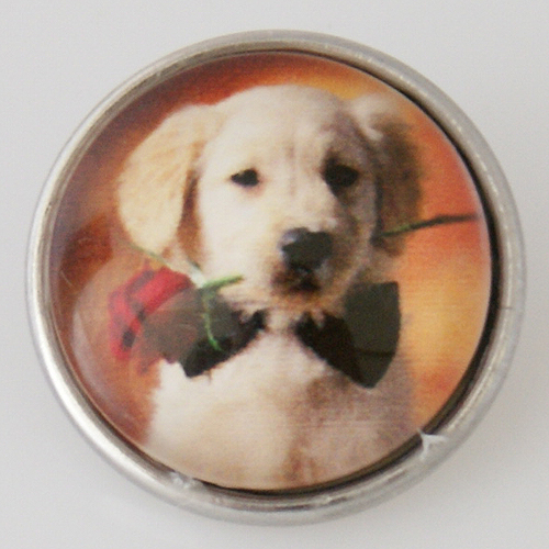 Snap Jewelry Photo - Animal - Dog Bow tie