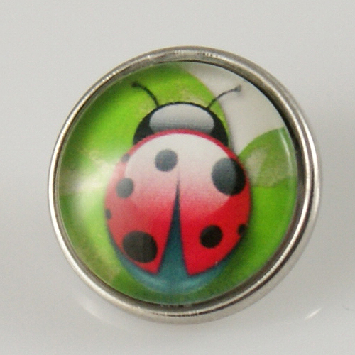 Snap Jewelry Photo - Animal - Ladybug