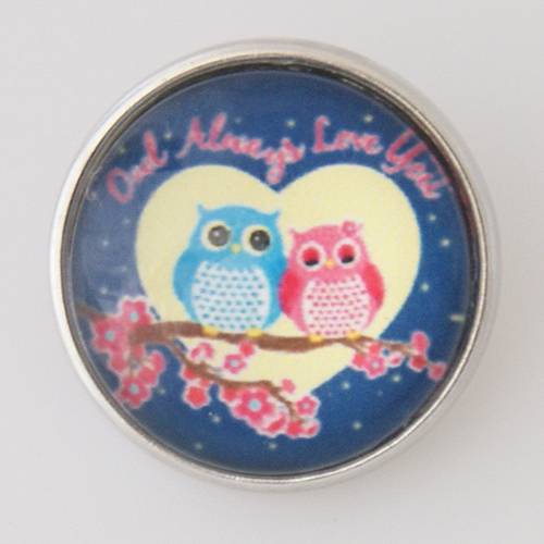 Snap Jewelry Photo - Animal - Owl Always Love You
