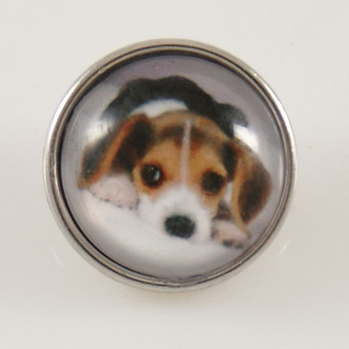 Snap Jewelry Photo - Animal - Dog Beagle